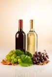 Bottiglia due di vino rosso e bianco con l'uva e le foglie di vite Immagini Stock Libere da Diritti