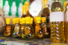 Bottiglia e liquore del miele con la bevanda tropicale tradizionale del serpente dentro fotografie stock