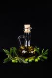 Bottiglia e ramo di ulivo di olio d'oliva Fotografie Stock