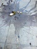 Bottiglia e rossetto di vino rotti su pavimentazione in calcestruzzo nella città Immagini Stock