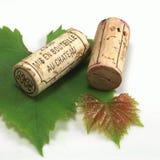 Bottiglia e sughero di vino Immagine Stock