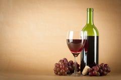 Bottiglia e vetro di vino Fotografia Stock Libera da Diritti