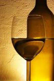 Bottiglia e vetro di vino bianco Fotografie Stock Libere da Diritti