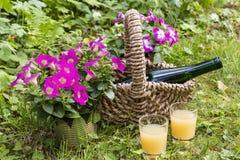 Bottiglia e vetro in un giardino Fotografia Stock Libera da Diritti