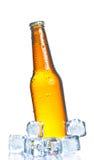 Bottiglia inclinata di birra fresca con ghiaccio e gocce Fotografie Stock Libere da Diritti