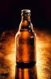 Bottiglia non aperta di birra raffreddata immagine stock libera da diritti