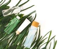 Bottiglia riutilizzabile con liquido Cosmetici di cura di pelle sulle foglie e sul fondo bianco Disposizione piana fotografia stock libera da diritti