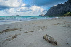 Bottiglia sulla spiaggia, Hawai Fotografia Stock