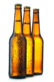 Bottiglia tre con birra immagine stock