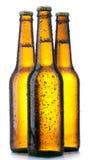 Bottiglia tre con birra e gocce fotografie stock libere da diritti
