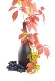 Bottiglia verde con vino rosso Immagini Stock Libere da Diritti