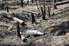 Bottiglie bruciate Fotografia Stock Libera da Diritti
