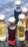 Bottiglie con differenti generi di aceto Immagini Stock Libere da Diritti