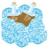 Bottiglie con il ghiaccio del pezzo della copertura della bevanda su fondo bianco illustrazione di stock
