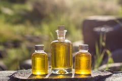 Bottiglie con l'olio naturale dell'aroma Fotografia Stock Libera da Diritti