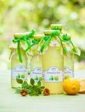 Bottiglie con lo sciroppo della melissa Immagini Stock