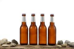 Bottiglie da birra fredde Fotografie Stock