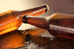 Bottiglie da birra fredde Concetto fresco delle bottiglie di birra Fotografie Stock
