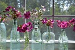 Bottiglie degli oggetti d'antiquariato a partire dal passato fotografia stock
