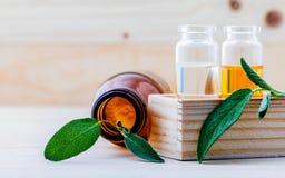 Bottiglie del primo piano di olio essenziale prudente per l'aromaterapia con salvia Fotografia Stock Libera da Diritti