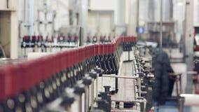 Bottiglie del vino rosso su un nastro trasportatore in una fabbrica di imbottigliamento del vino archivi video