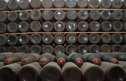 Bottiglie del vino rosso in una cantina Fotografia Stock
