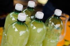 Bottiglie dell'ANIMALE DOMESTICO Fotografia Stock Libera da Diritti