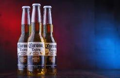 Bottiglie della birra di Corona Extra immagini stock