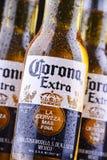 Bottiglie della birra di Corona Extra immagini stock libere da diritti