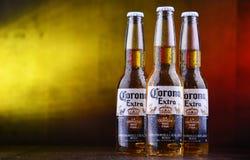 Bottiglie della birra di Corona Extra fotografie stock