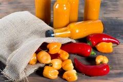 Bottiglie della salsa piccante del peperoncino Fotografia Stock