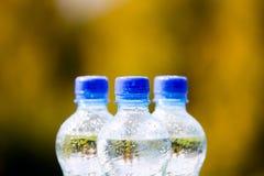 Bottiglie di acqua minerale sul fondo della natura Fotografia Stock Libera da Diritti