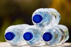 Bottiglie di acqua minerale sul fondo della natura Immagini Stock
