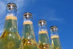 Bottiglie di birra Fotografie Stock