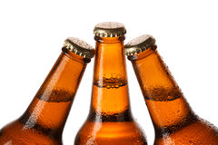 Bottiglie di birra fredda Immagine Stock