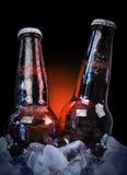 Bottiglie di birra ghiacciate della classe sul nero Fotografie Stock