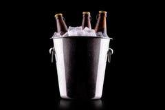 Bottiglie di birra in secchiello del ghiaccio Immagini Stock Libere da Diritti