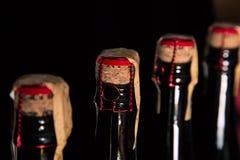 Bottiglie di champagne Immagini Stock