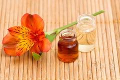 Bottiglie di olio essenziale Immagini Stock Libere da Diritti