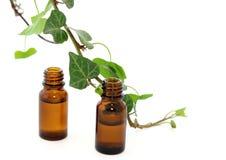 Bottiglie di olio essenziale e del ramo dell'edera isolati Fotografia Stock