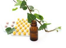 Bottiglie di olio essenziale e del ramo dell'edera isolati Immagini Stock