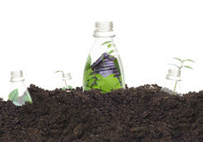 Bottiglie di plastica ecologiche Immagini Stock