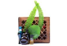 Bottiglie di profumo naturali aromatiche Fotografia Stock