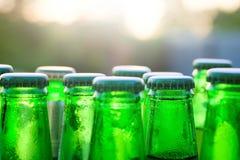 Bottiglie di vetro verdi di birra sui precedenti al tramonto Immagine Stock Libera da Diritti