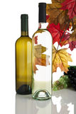 Bottiglie di vino bianco, gtapes e fogli di caduta Fotografia Stock