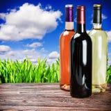 Bottiglie di vino della specie differente Immagini Stock Libere da Diritti