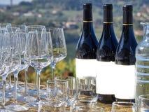 Bottiglie di vino e di vetri con la campagna di Langhe fotografia stock