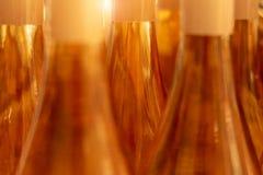Bottiglie di vino rosato con luce solare fotografie stock
