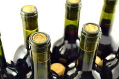 Bottiglie di vino su un fondo bianco Immagini Stock