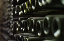 Bottiglie di vino sulla parete della cantina fotografie stock libere da diritti